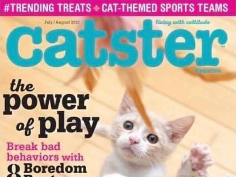 Cover of Catster Magazine