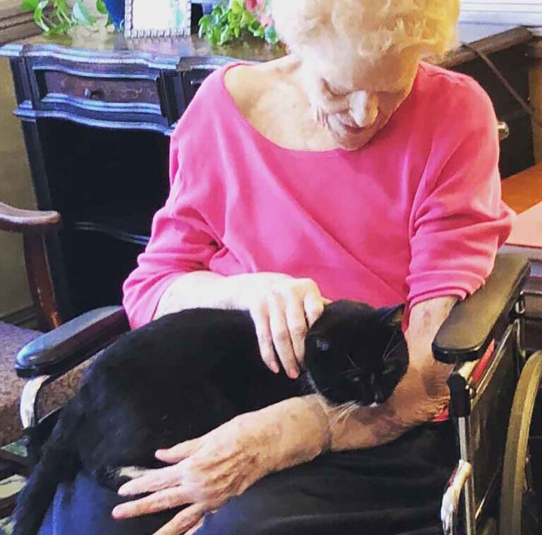 Elderly woman with cat in lap